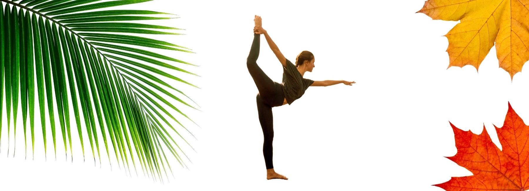 Madal-Bal-naravni-drevesni-sirup-razstrupljanje-z -limono-in-sirupom