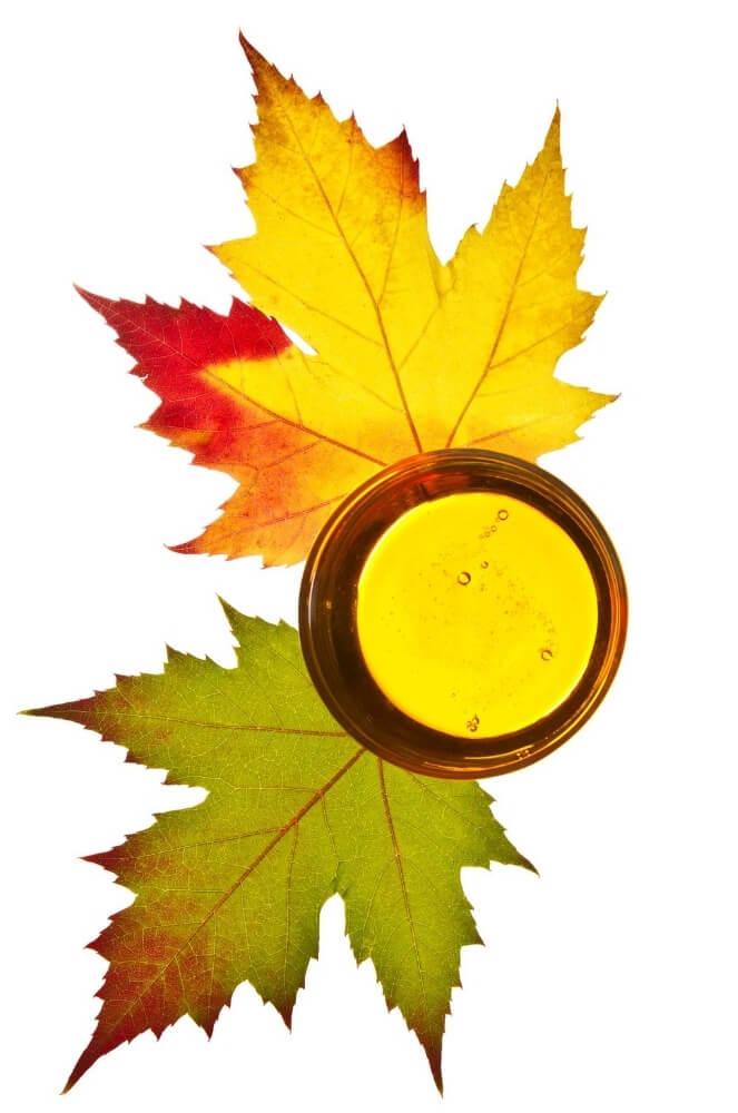 Madal-Bal-naravni-drevesni-sirup-razstrupljanje-sirup-javorjev-list